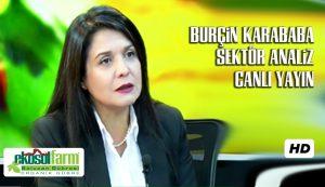 Burcin Karababa Sektor Analiz CANLI YAYIN