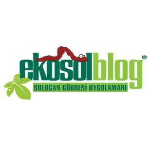 EkosolBlog