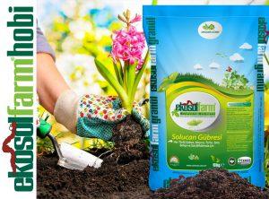 Ekosolfarm Ürünler