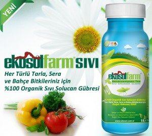 EkosolFarm %100 Organik Sıvı Solucan Gübresi®
