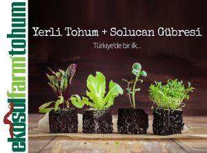 Osmanli Bahçesi Yerli Tohum